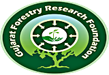 Gujarat Forestry Research Foundation